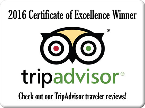 We are rated on TripAdvisor
